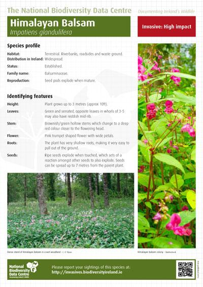 Media Library - Cover - Biodiversity Series